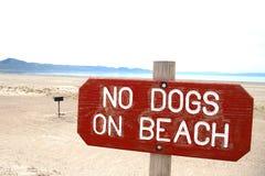 Keine Hunde stockfoto