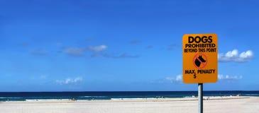 Keine Hunde auf dem Strand Stockbild