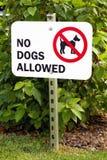 Keine Hunde Zeichen erlaubt Lizenzfreie Stockbilder