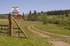 Keine Jagd und keine übertretenden Zeichen stockbilder