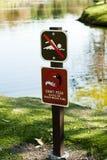 Keine Schwimmen speisen nicht Enten Lizenzfreies Stockfoto
