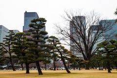 Keizer het paleistuin van Tokyo op 31 Maart, 2017 | Reis openluchtaantrekkelijkheid Royalty-vrije Stock Afbeeldingen