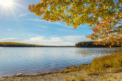 Kejimkujik lake in fall from Jeremy Bay Campground Royalty Free Stock Photos