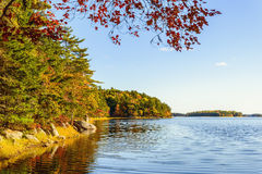 Kejimkujik lake in fall from Jeremy Bay Campground Royalty Free Stock Images