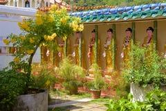 keklokmalaysia penang si tempel royaltyfri foto