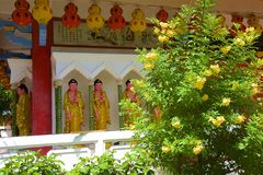 keklokmalaysia penang si tempel arkivbild