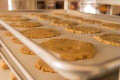 Keksplätzchenteig des Glutens freier Lizenzfreie Stockfotografie