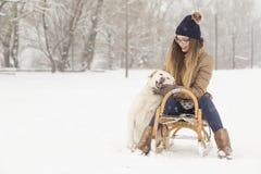 Kela hunden Fotografering för Bildbyråer