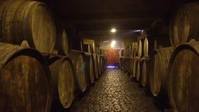 Kelder met wijnvatten stock footage