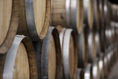 Kelder van houten vaten, wijn en bier Stock Afbeelding