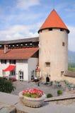 Kelderverdiepingsbinnenplaats en toren van oude vesting Afgetapt Kasteel, Slovenië Stock Foto