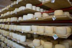 Keller des Schweizer Käses Lizenzfreies Stockfoto