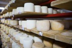Keller des Schweizer Käses Stockfotos