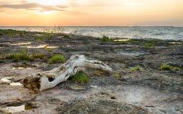 Kelleys Island , Ohio Alvar. The sunset over Lake Erie as seen from the Kelleys Island alvar Stock Images