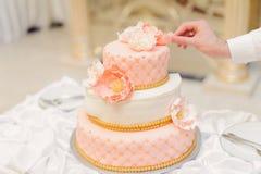 Kellner Touching Cake Stockbild