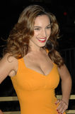 Kelly Brook Royalty Free Stock Photography
