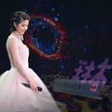 Kelly Chen Concert 2015 Royalty-vrije Stock Foto