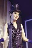 Kelly chen vaxdiagram royaltyfri foto