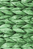 Kelly Green Palm Fiber Place Mat Coarse Plaiting Rustic Grunge Texture Detail.  Stock Image