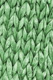 Kelly Green Palm Fiber Place Mat Coarse Plaiting Rustic Grunge Texture Detail.  Royalty Free Stock Images