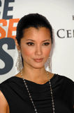 Kelly Hu Stock Image