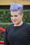 Kelly Osbourne. LOS ANGELES, CA - JANUARY 25, 2015: Kelly Osbourne at the 2015 Screen Actors Guild  Awards at the Shrine Auditorium Royalty Free Stock Photography