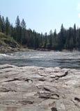 Kelly River Nature royaltyfri foto