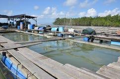Kelong, plataforma a pouca distância do mar Imagem de Stock Royalty Free
