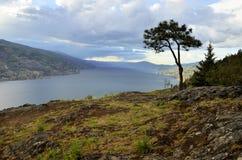 Kelowna do lago Okanagan Fotos de Stock