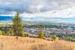 Kelowna viewed from Knox Mountain Park in autumn. Ponderosa pine trees and grasses on Knox Mountain with view of city of Kelowna and mountains in distance Royalty Free Stock Photography