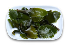 Kelp. Laminaria japonica Aresch. Alias EK, river Chinese cabbage. Brown a, growth in the rock on the seabed, shaped like a tape, containing a large amount of stock image