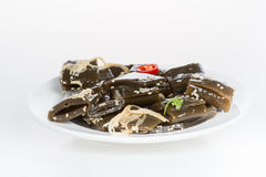 Kelp Stock Photo
