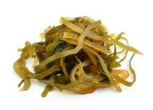 Kelp ( laminaria ) on the white background. Royalty Free Stock Photo