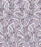 Kelp light purple hatching Stock Photo