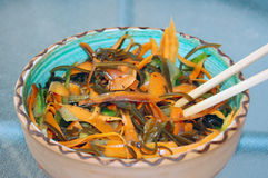 Kelp noodles salad with carrot and cucumber Royalty Free Stock Photography