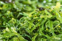 Kelp Salad background image Stock Photo