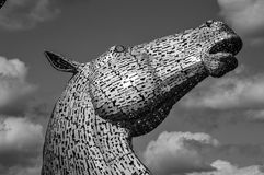 Kelpie Royalty Free Stock Images