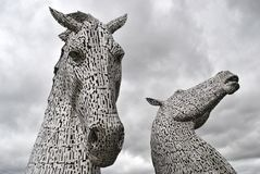 Kelpies escoceses Foto de Stock Royalty Free