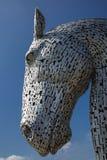 kelpies paard Stock Afbeeldingen