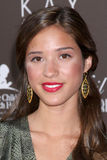 Kelsey Chow Royalty Free Stock Images