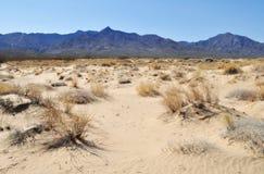 Kelso diuny, Mojave Krajowa prezerwa zdjęcie stock