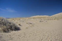 Kelso dunes. Mojave desert, california Royalty Free Stock Images
