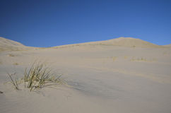 Kelso dunes. At the mojave desert, california Stock Photos