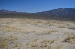 Kelso dunes. At the mojave desert, california Royalty Free Stock Image