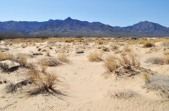 Kelso Dunes, Mojave National Preserve Stock Photo