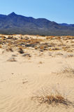 Kelso Dunes, Mojave National Preserve Royalty Free Stock Photos
