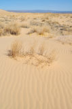 Kelso Dunes, Mojave National Preserve Stock Photos