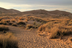 Kelso Dunes Trail Royalty Free Stock Photo