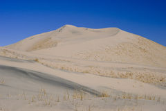 Kelso Sand Dunes Stock Image