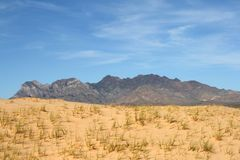 Kelso Sand Dunes, Mojave Desert, California Royalty Free Stock Photography